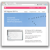 WP Migrate DB Pro Review